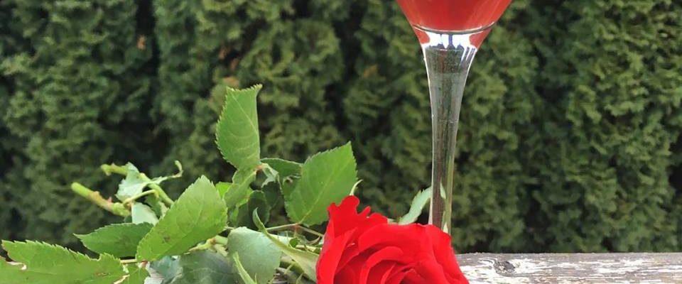 Juice av roseblader & bjørnebær – og rosens helsemessige egenskaper