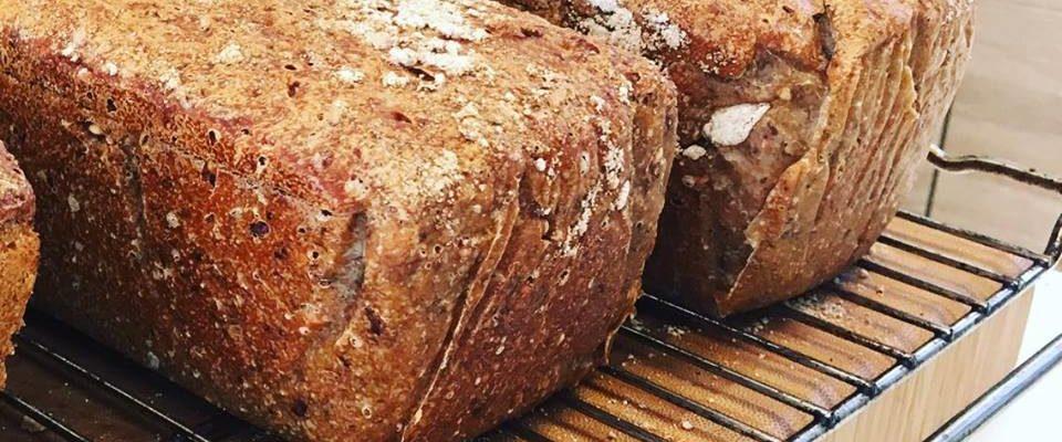 Brød er ikke farlig! Så sant du ikke baker det med såkalt «super»-hvete, da…
