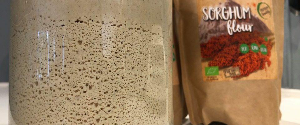 Glutenfri surdeigsstarter av Sorghum